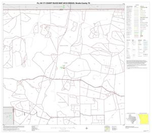 Primary view of object titled 'P.L. 94-171 County Block Map (2010 Census): Brooks County, Block 2'.