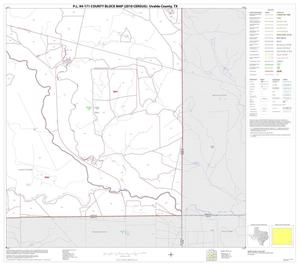 Primary view of object titled 'P.L. 94-171 County Block Map (2010 Census): Uvalde County, Block 30'.