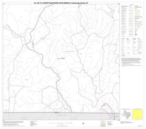 Primary view of object titled 'P.L. 94-171 County Block Map (2010 Census): Armstrong County, Block 9'.
