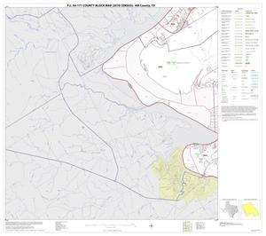 Primary view of object titled 'P.L. 94-171 County Block Map (2010 Census): Hill County, Block 13'.