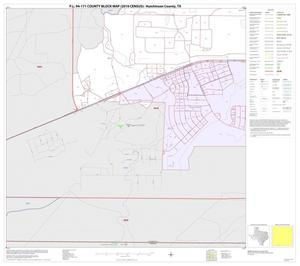 Primary view of object titled 'P.L. 94-171 County Block Map (2010 Census): Hutchinson County, Inset C05'.