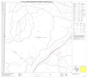Primary view of object titled 'P.L. 94-171 County Block Map (2010 Census): Hemphill County, Block 5'.