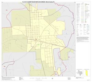 Primary view of object titled 'P.L. 94-171 County Block Map (2010 Census): Morris County, Inset B01'.