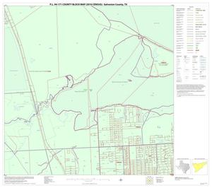 Primary view of object titled 'P.L. 94-171 County Block Map (2010 Census): Galveston County, Block 26'.