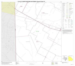 Primary view of object titled 'P.L. 94-171 County Block Map (2010 Census): Atascosa County, Block 8'.