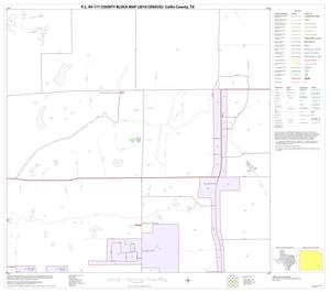 Primary view of P.L. 94-171 County Block Map (2010 Census): Collin County, Block 79