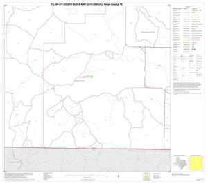 Primary view of object titled 'P.L. 94-171 County Block Map (2010 Census): Nolan County, Block 14'.