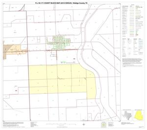 Primary view of object titled 'P.L. 94-171 County Block Map (2010 Census): Hidalgo County, Block 80'.