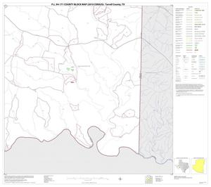 Primary view of object titled 'P.L. 94-171 County Block Map (2010 Census): Terrell County, Block 20'.