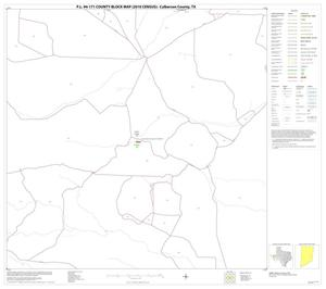 Primary view of object titled 'P.L. 94-171 County Block Map (2010 Census): Culberson County, Block 29'.