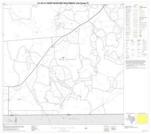 Primary view of object titled 'P.L. 94-171 County Block Map (2010 Census): Irion County, Block 11'.