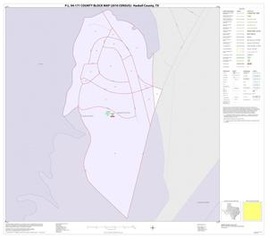 Primary view of object titled 'P.L. 94-171 County Block Map (2010 Census): Haskell County, Inset D01'.
