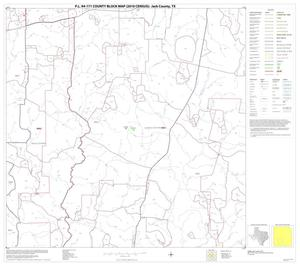 Primary view of object titled 'P.L. 94-171 County Block Map (2010 Census): Jack County, Block 14'.
