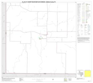 Primary view of object titled 'P.L. 94-171 County Block Map (2010 Census): Callahan County, Block 13'.