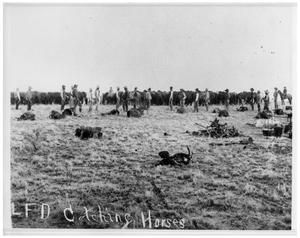 Primary view of object titled 'LFD Ranch'.