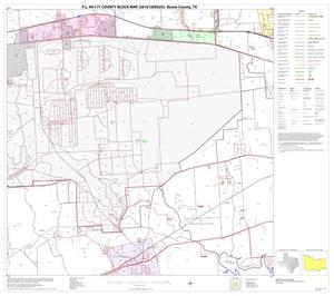 Primary view of object titled 'P.L. 94-171 County Block Map (2010 Census): Bowie County, Block 12'.