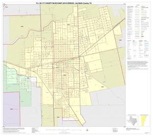 Primary view of object titled 'P.L. 94-171 County Block Map (2010 Census): Jim Wells County, Inset D01'.