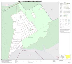 Primary view of object titled 'P.L. 94-171 County Block Map (2010 Census): Hood County, Inset E01'.
