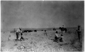Primary view of object titled 'Branding on the Half Circle 84 Ranch'.