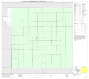 Primary view of object titled 'P.L. 94-171 County Block Map (2010 Census): Briscoe County, Inset B01'.