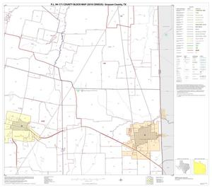 Primary view of object titled 'P.L. 94-171 County Block Map (2010 Census): Grayson County, Block 21'.