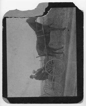 Primary view of object titled '[Couple in horse buggy]'.
