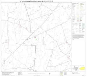 Primary view of object titled 'P.L. 94-171 County Block Map (2010 Census): Washington County, Block 11'.