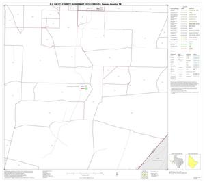 Primary view of object titled 'P.L. 94-171 County Block Map (2010 Census): Reeves County, Block 40'.