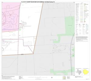 Primary view of object titled 'P.L. 94-171 County Block Map (2010 Census): Fort Bend County, Block 53'.