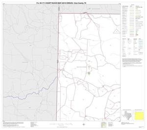 Primary view of object titled 'P.L. 94-171 County Block Map (2010 Census): Irion County, Block 1'.