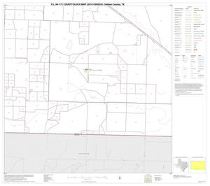 Primary view of object titled 'P.L. 94-171 County Block Map (2010 Census): Dallam County, Block 21'.
