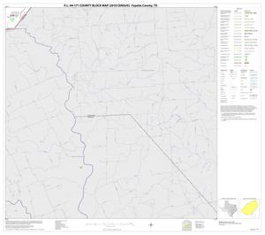 Primary view of object titled 'P.L. 94-171 County Block Map (2010 Census): Fayette County, Block 20'.