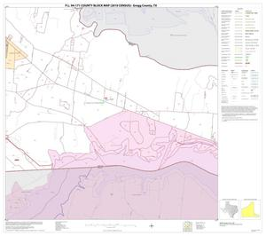 Primary view of object titled 'P.L. 94-171 County Block Map (2010 Census): Gregg County, Block 20'.