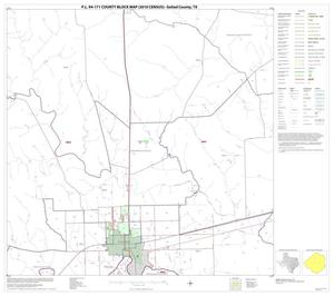 Primary view of object titled 'P.L. 94-171 County Block Map (2010 Census): Goliad County, Block 7'.