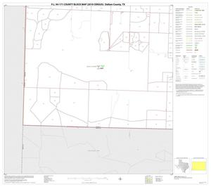 Primary view of object titled 'P.L. 94-171 County Block Map (2010 Census): Dallam County, Block 19'.