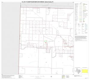 Primary view of object titled 'P.L. 94-171 County Block Map (2010 Census): Gaines County, Block 1'.
