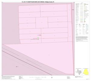 Primary view of object titled 'P.L. 94-171 County Block Map (2010 Census): Hidalgo County, Inset Y01'.