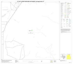 Primary view of object titled 'P.L. 94-171 County Block Map (2010 Census): Jim Hogg County, Block 10'.
