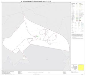 Primary view of object titled 'P.L. 94-171 County Block Map (2010 Census): Nolan County, Inset C01'.