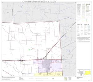 Primary view of object titled 'P.L. 94-171 County Block Map (2010 Census): Chambers County, Block 5'.