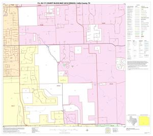 Primary view of object titled 'P.L. 94-171 County Block Map (2010 Census): Collin County, Block 75'.