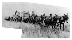 Primary view of object titled '[Mule teams]'.