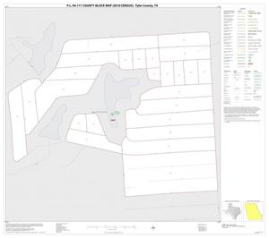 Primary view of object titled 'P.L. 94-171 County Block Map (2010 Census): Tyler County, Inset A01'.