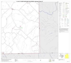 Primary view of object titled 'P.L. 94-171 County Block Map (2010 Census): Montague County, Block 18'.