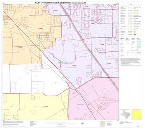 Primary view of object titled 'P.L. 94-171 County Block Map (2010 Census): Tarrant County, Block 54'.