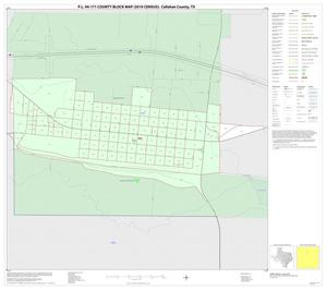 Primary view of object titled 'P.L. 94-171 County Block Map (2010 Census): Callahan County, Inset C01'.