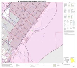 Primary view of object titled 'P.L. 94-171 County Block Map (2010 Census): Jefferson County, Block 20'.