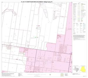 Primary view of object titled 'P.L. 94-171 County Block Map (2010 Census): Hidalgo County, Block 64'.