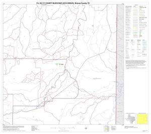 Primary view of object titled 'P.L. 94-171 County Block Map (2010 Census): Briscoe County, Block 6'.