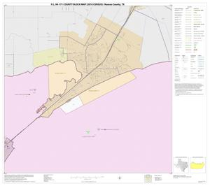 Primary view of object titled 'P.L. 94-171 County Block Map (2010 Census): Nueces County, Block 9'.